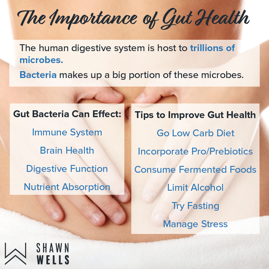 The importance of Gut Health