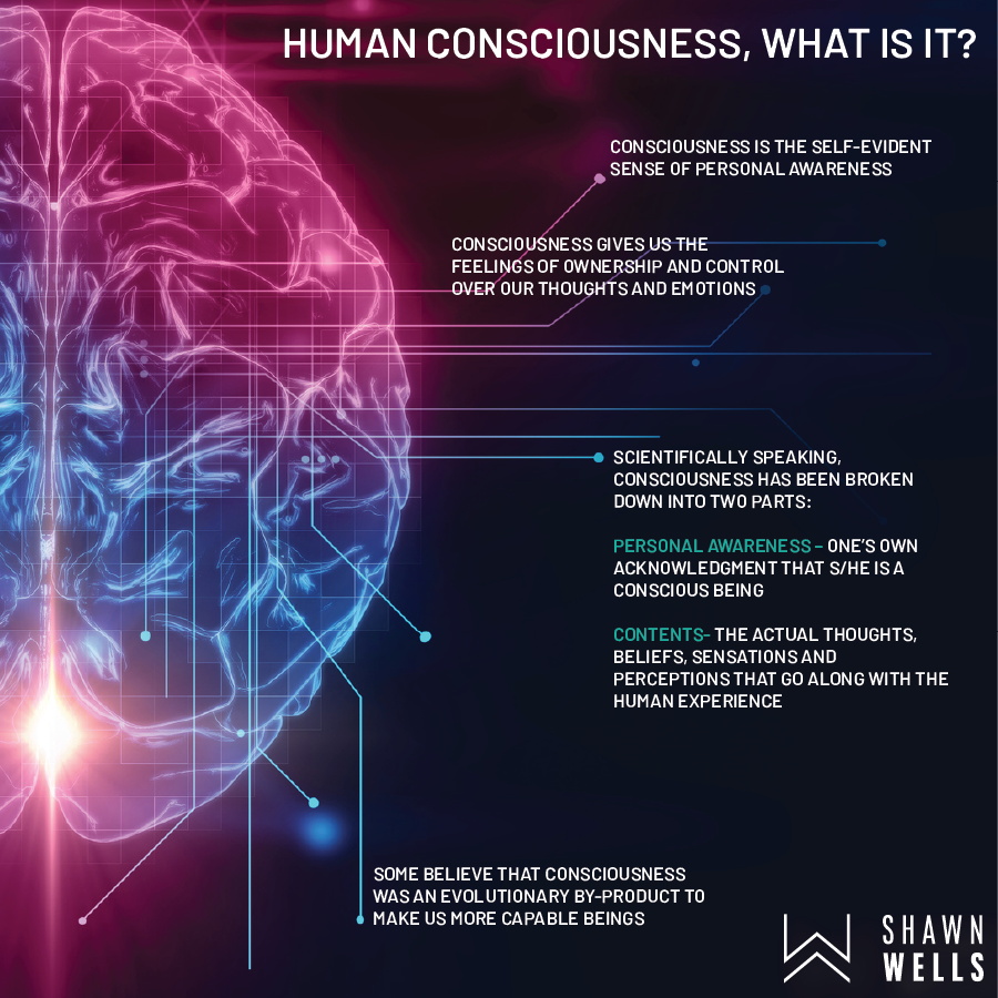 Human Consciousness, What is it?