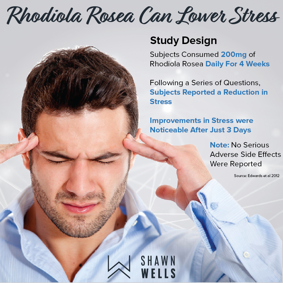 Rhodiola Rosea can lower stress
