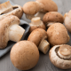 Mushrooms benefits and supplements