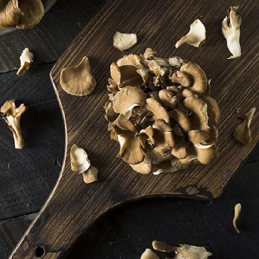 MAITAKE mushrooms and benefits