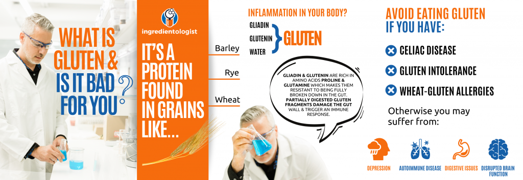 What is gluten and is it bad for you?