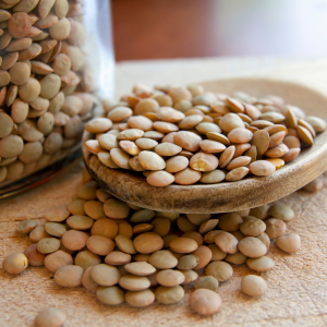 Lectins on Your Guide To Antinutrients from Plants