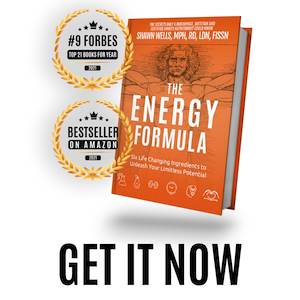 The Energy Formula book by Shawn Wells